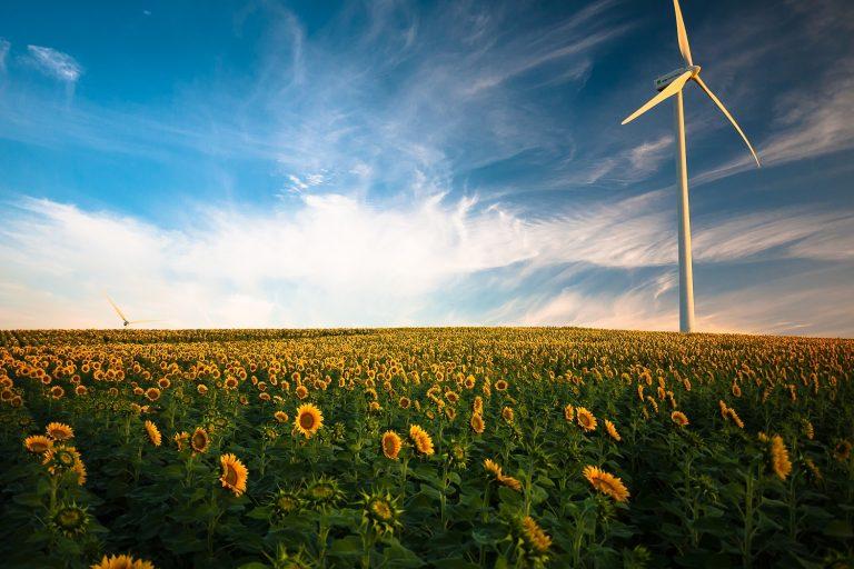 Energia verde in Italia: cos'è e perché sceglierla