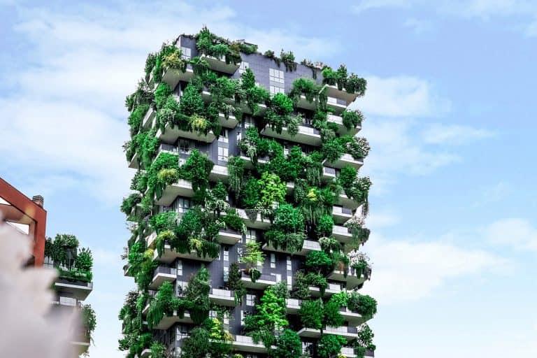 Il Green new deal Italia e lo sviluppo sostenibile