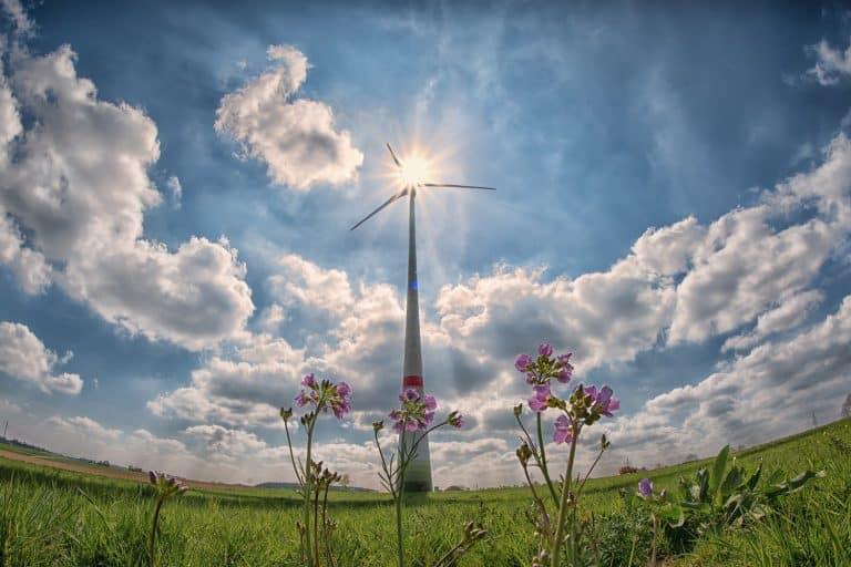 Perché la decarbonizzazione è fondamentale per il nostro futuro